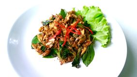 Stir fried clams with roasted chill paste Stock Image