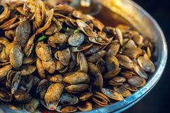 Stir fried clams with roasted chilli Stock Image