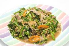Stir-fried crab meat with curry powder. Royalty Free Stock Photos