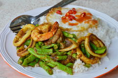 Stir-fried curry seafood and fried egg on rice. In dish stock image