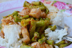 Stir-fried curry yard long bean with fat pork for Thai esay meal on dish Royalty Free Stock Photography