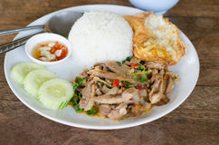 Stir fried duck with holy basil. Thai food royalty free stock photo