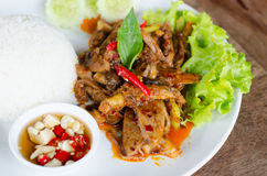 Stir Fried Duck with Roasted Chili Paste Stock Image