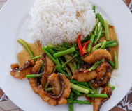 Stir-fried fish and asparagus Royalty Free Stock Photos
