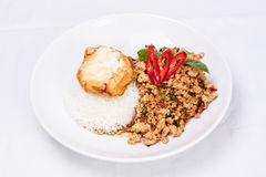 Stir-fried ground chicken with chilli basil sauce Royalty Free Stock Image