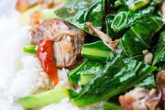 Stir fried kale with crispy pork and rice Royalty Free Stock Photos