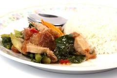Stir fried kale Crispy pork with steamed rice Stock Image