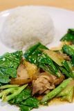 Stir fried kale with crispy pork and steamed rice Stock Image