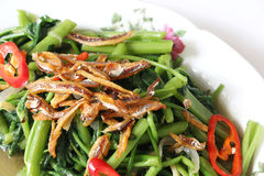Stir fried Kangkung. With fried anchovies and chili on white isolated background Stock Photography