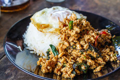 Stir fried minced pork. And Thai holy basil with fried egg and rice (Thai call Pad ka prao moo sap Stock Image