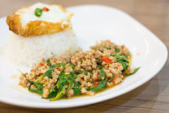 Stir Fried Minced Pork with Holy Basil and Fried egg Royalty Free Stock Photos