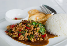 Stir-fried minced pork with holy basil and steamed rice (Thai food) Stock Photos