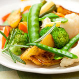Stir-fried mixed vegetables with rosemary Royalty Free Stock Images