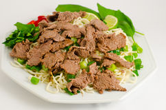 Stir-fried noodle with beef Stock Image