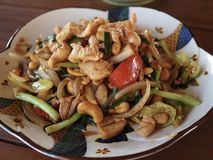 Stir Fried Pock with Cashew Nuts Stock Image