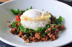 Stir fried pork with basil and egg Royalty Free Stock Image