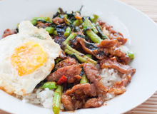 Stir fried pork with basil and fried egg on rice Royalty Free Stock Images