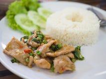 Stir-fried pork and basil with rice. Thai spicy food basil pork fried rice recipe Krapao Moo stock photos
