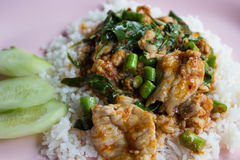 Stir fried pork and curry paste. Stir fried pork and red curry paste with yardlong beans on rice Royalty Free Stock Image