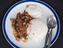 Stir fried pork with holy basil and fried egg Royalty Free Stock Image