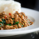 Stir Fried Pork Holy Basil With Rice - Selecti Stock Photography