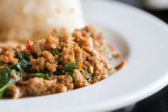 Stir Fried Pork Holy Basil With Rice - Selecti Stock Photos