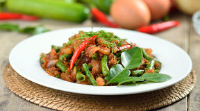 Stir-fried pork with lentil   in spicy red chilli ,thais cuisine Stock Images