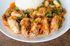 Stir Fried  Prawn with Roasted Chili Paste Stock Photos