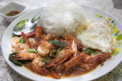 Stir-fried prawns. With basil, rice and fried egg Royalty Free Stock Photos
