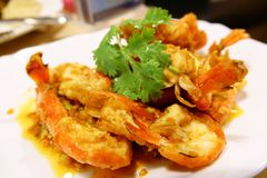 Stir-fried prawns with garlic and pepper on white dish close up royalty free stock photo