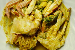Stir fried sand crab in yellow curry on plate. Stir fried sand crab in yellow curry on white plate Stock Photos