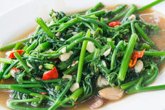 Stir-Fried Sayate Wish Salted Soya Bean. Fried vegetables Stock Photography