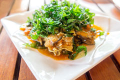 Stir fried Sea Bass Fish with spicy herbs. Thai food Royalty Free Stock Photos