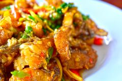 Stir Fried Sea Bass Is seafood That is spicy and very tasty. is a popula food stock image