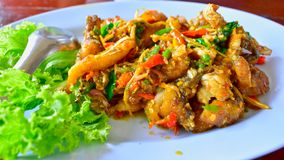 Stir Fried Sea Bass Is seafood That is spicy and very tasty. is a popula food royalty free stock image