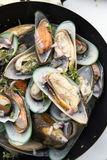 Stir-fried sea mussels in pan Stock Photography