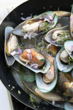 Stir-fried sea mussels in pan Royalty Free Stock Photography