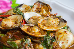 Stir fried shellfish with chili sauce Stock Photos
