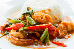 Stir fried shrimp in thai red curry paste , Royalty Free Stock Photography