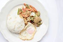 Stir-fried Soft-shelled seafood in curry powder & Thai jasmine rice.  Royalty Free Stock Photos