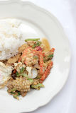 Stir-fried Soft-shelled seafood in curry powder & Thai jasmine rice Royalty Free Stock Photography