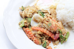 Stir-fried Soft-shelled seafood in curry powder & Thai jasmine rice. Thai Food Stock Photo