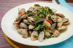 Stir fried Spicy Clams Stock Images