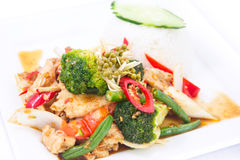 Stir fried spicy Thai herbs with jasmine rice. Stock Photography