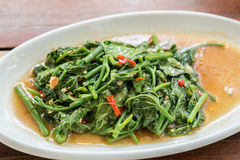 Stir Fried sponach. Stir Fried morning glory Thai Water Spinach Stock Images