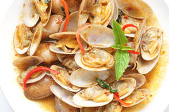 Stir  fried surf clams with roasted chili paste Stock Images