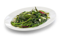 Stir fried sweet potato leaves Royalty Free Stock Photography