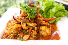 Stir fried Tom Yum seafood. Thai food - Stir fried Tom Yum seafood Royalty Free Stock Images
