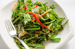 Stir fried vegetable Royalty Free Stock Photography