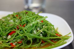 Stir fried vegetable. Stir fried water morning glory or water spinach Royalty Free Stock Photography